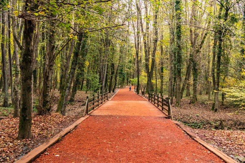 Belgdrad Ormanları Gezi Rehberi 2019